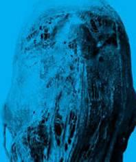 « Lord of Salem » : le film dévoile les nouvelles images de la réalisation Lords-of-salem